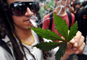 BOG01 MEDELLIN COLOMBIA 02 05 09 - Un manifestante muestra una hoja que simboliza a la planta de cannabis sativa hoy 2 de mayo de 2009 en el centro de Medellin Colombia donde grupos de consumidores congregados por la Asociacion Canabica de Colombia se reunien para marchar por la legalizacion de la marihuana El acto se realizo en varias ciudades del mundo EFE Edgar Dominguez