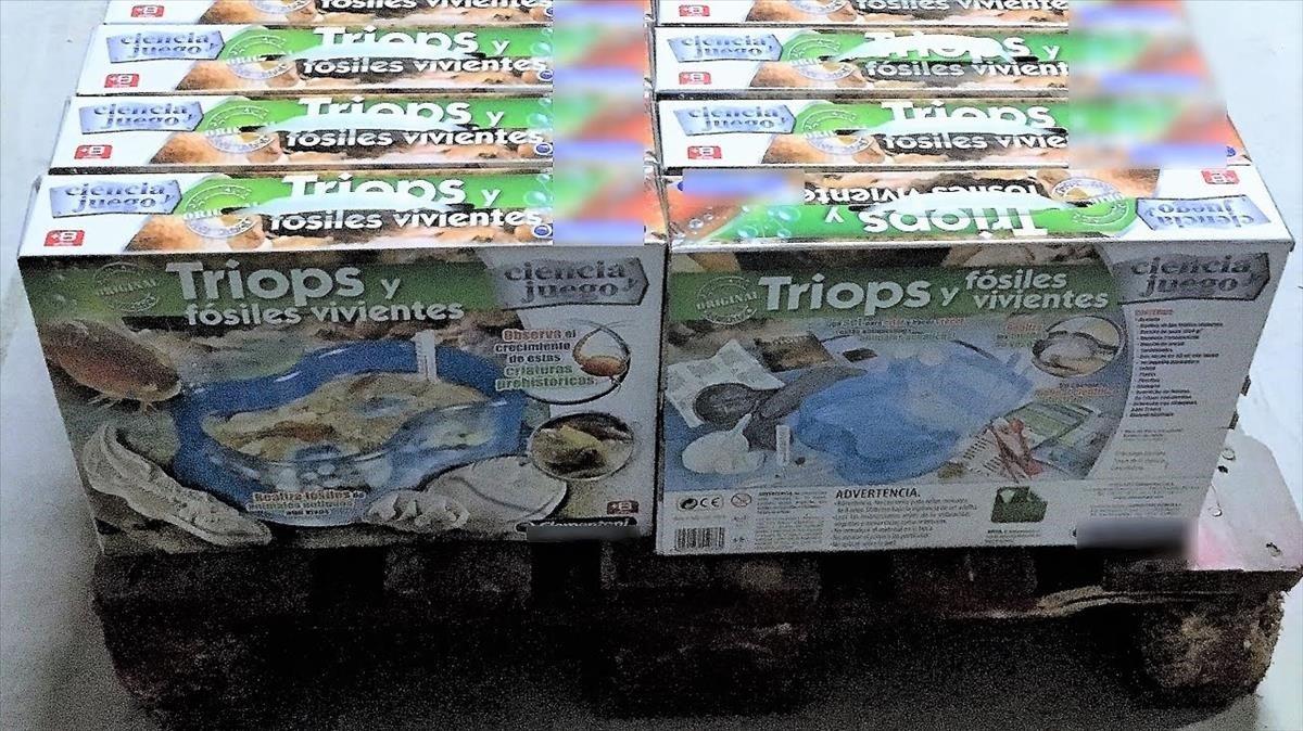Condemnada una joguinaire per vendre un crustaci mil·lenari