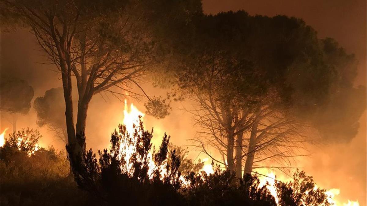 Un any humit manté els focs a ratlla aquest estiu a Catalunya