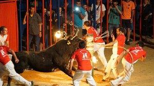 Espectáculo de toro embolado en Sant Jaume dEnveja, en el 2016.