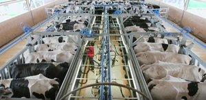 Agricultores y ganaderos de toda España afirman que no dejarán de trabajar durante la crisis del coronavirus.