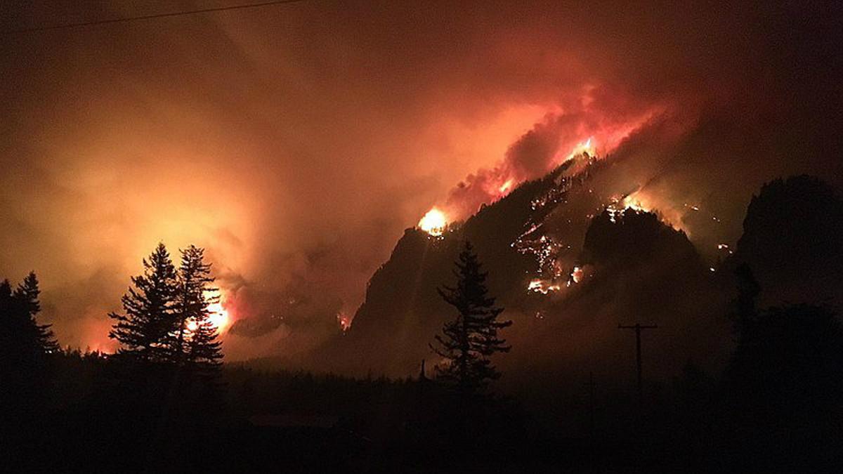 Aspecto del incendio provocado por el menor de 15 años y que calcinó más de 4.000 herctáreas en el cañón del río Columbia (Oregón, EEUU).