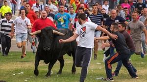 Todo de la Vega alternativo celebrado en Tordesillas