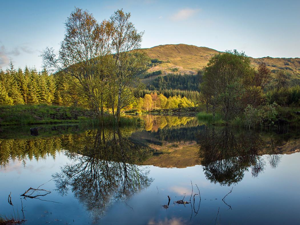 Una imagen de la Reserva Natural Highland Titles, en el Bosque de Glencoe, Escocia.