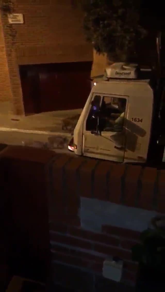 Una piara de jabalís persigue a un camión de la basura en la calle de Maduixer, en Barcelona