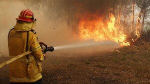 Un bombero trabaja en la extinción de un incendio forestalen los alrededores de Sídney, en Australia