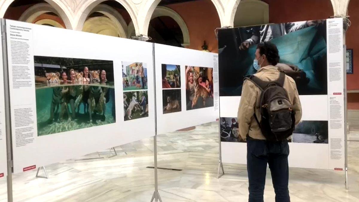 Exposición World Press Photo 2020 en Sevilla.