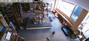 Esto es lo que pasa cuando los gatos detectan un terremoto segundos antes de que suceda