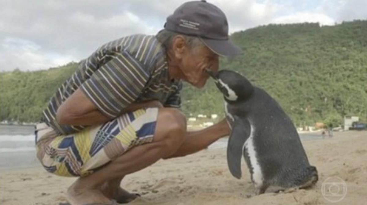 Dindim el pingüino viajero -1