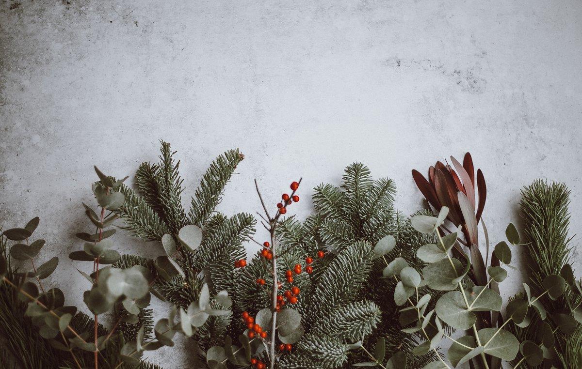 Calcular las cantidades de alimento o mantener la nevera cerrada son algunas de las recomendaciones para una navidad verde.