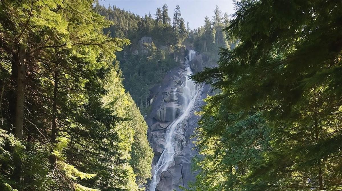 Una imagen de las cataratas de Shannon Falls, en Canadá, donde los tres youtubers perdieron la vida.