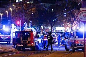 La Policía de Austria reguarda la zona de los atentados en Viena.