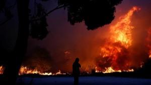 El fuego en California no se detiene y sigue destruyendo todo a su paso.