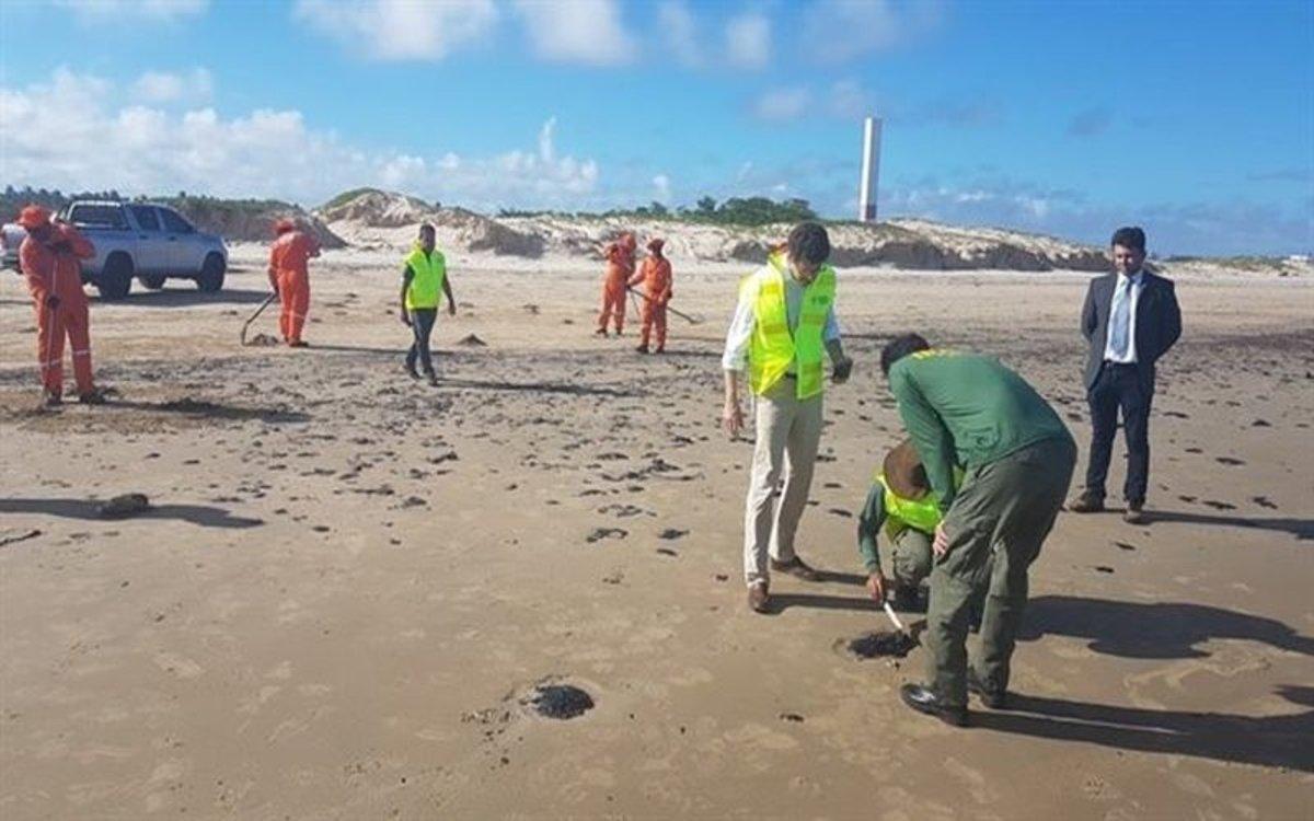 Autoridades limpian las manchas de petróleo de las playas de Brasil.