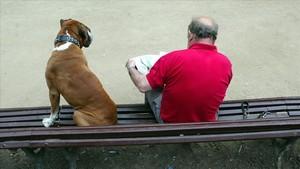 Un hombre y un perro, en un banco en Barcelona.