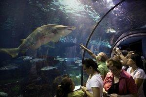 Visitantes en L'Aquàrium.