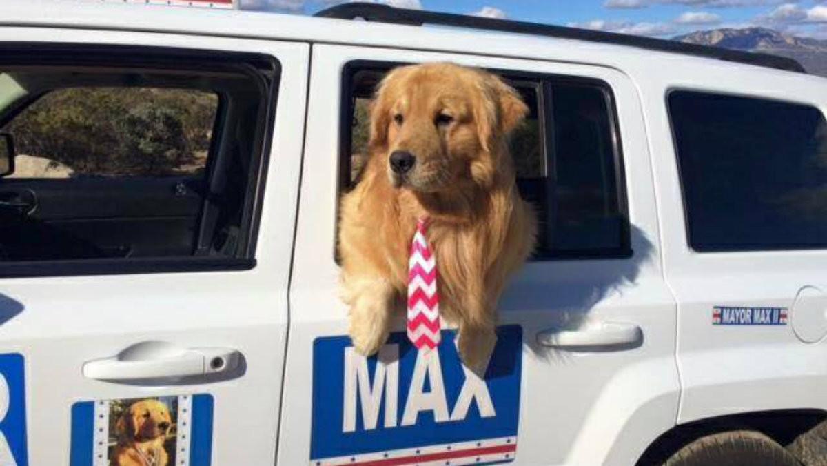 El alcalde de Idyllwill Max en su coche oficial.