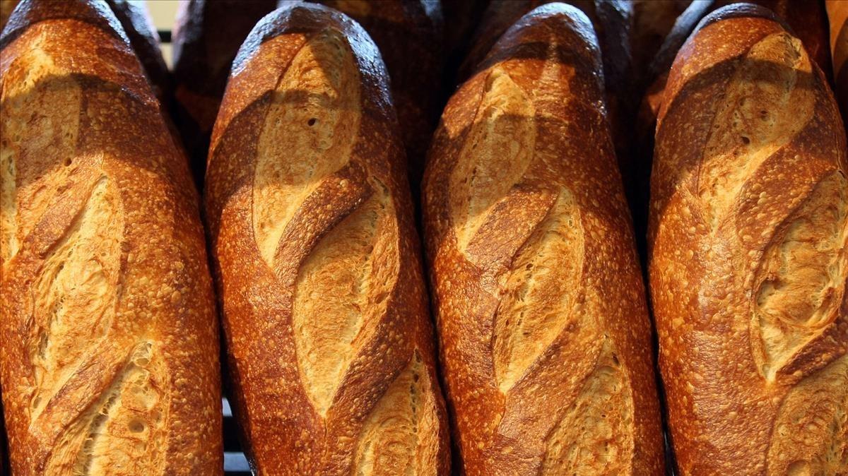 Panes que curan hombros