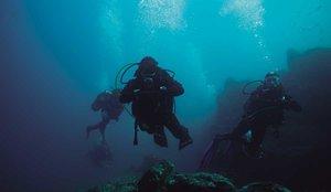 Un tresor amagat al fons del mar