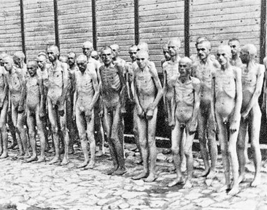 Tuits desde el horror nazi