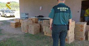Més de 1.000 inspeccions i 48 infraccions durant la campanya pirotècnica a Catalunya