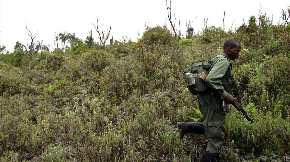 Un guardia armado en el parque de Virunga en el 2011.
