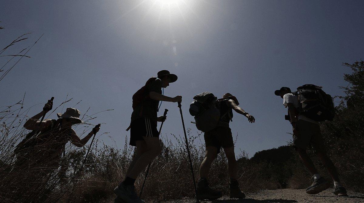 Un grupo de peregrinos, realizando el Camino de Santiago, a la altura de la localidad navarra de Zabaldika, en agosto del 2018.