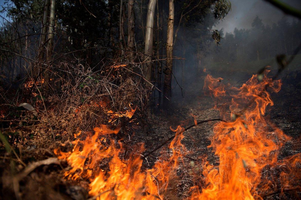 Los incendios forestales suponen una amenaza constante de vulneración de derechos humanos.
