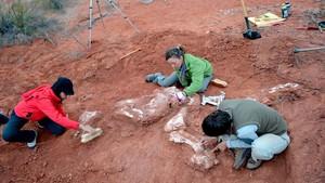 Investigadores del Conicetrevelan en un estudio que los primeros dinosaurios gigantes aparecieron 30 millones de años antes de lo que se creía.