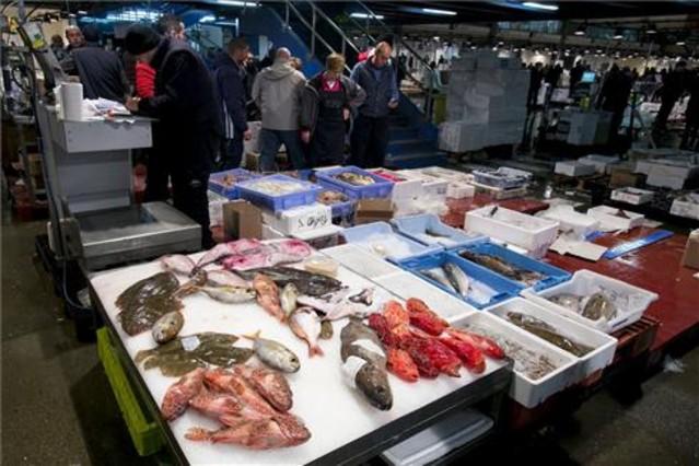 Parada de peix a Mercabarna.