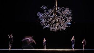 Ensayo de Wings of wax,de Jiri Kylian,interpretada por el Ballet de la Ópera de Lyonen el Liceu.