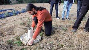 Un investigador planta uncocoonbiodegradable en El Bruc, en el marco del proyecto de reforestacion de zonas degradadasThe Green Link.