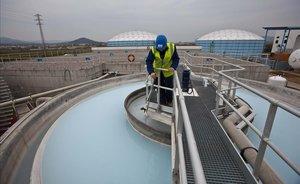 Las desalinizadoras de Catalunya aumentan su rendimiento por la sequía