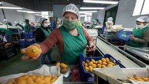 Espanyola a l'atur: de rebre hostes a col·locar fruita