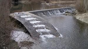 Els passos fluvials recuperen les migracions dels peixos