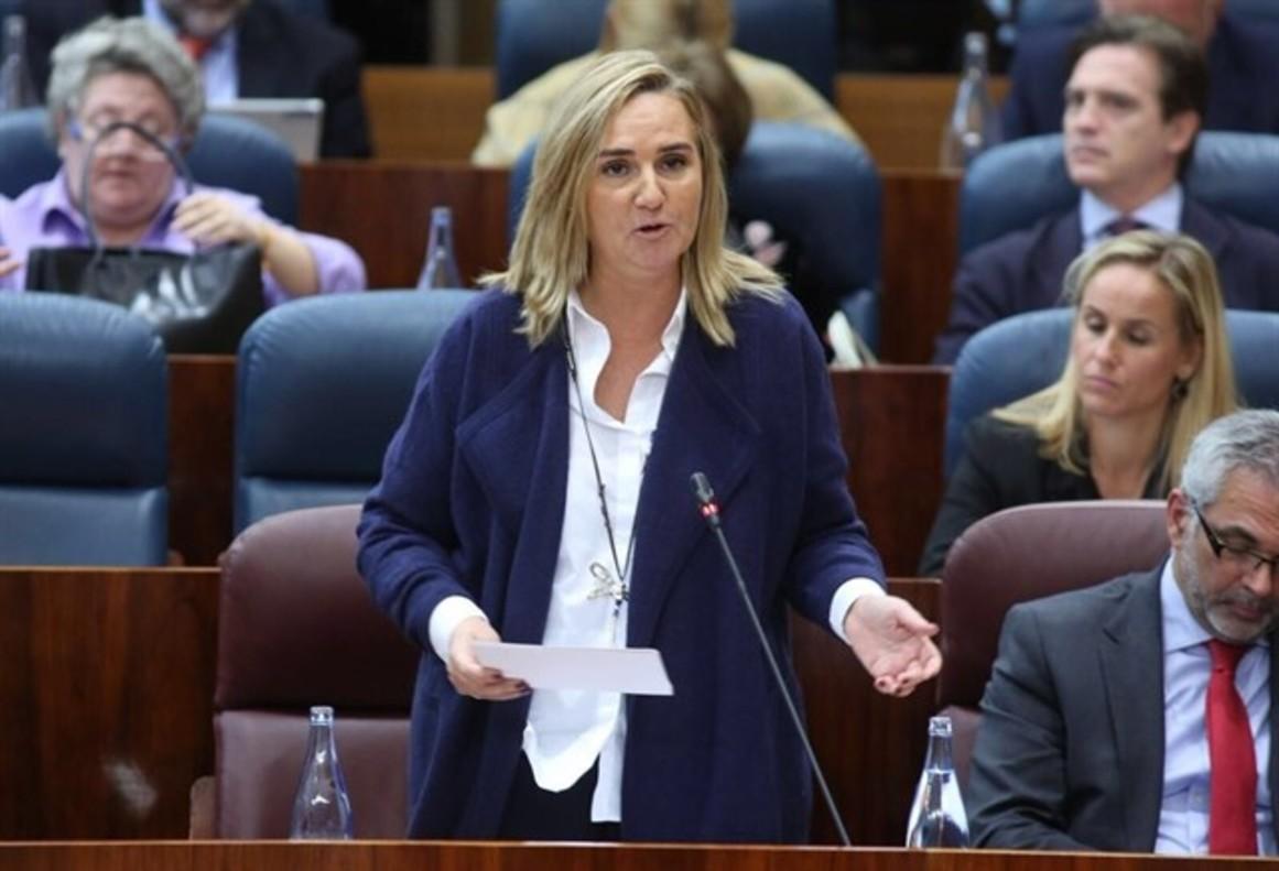 La consejera de Transportes, Vivienda e Infraestructuras de la Comunidad de Madrid, Rosalía Gonzalo