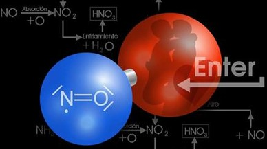 NO, la molécula sexi