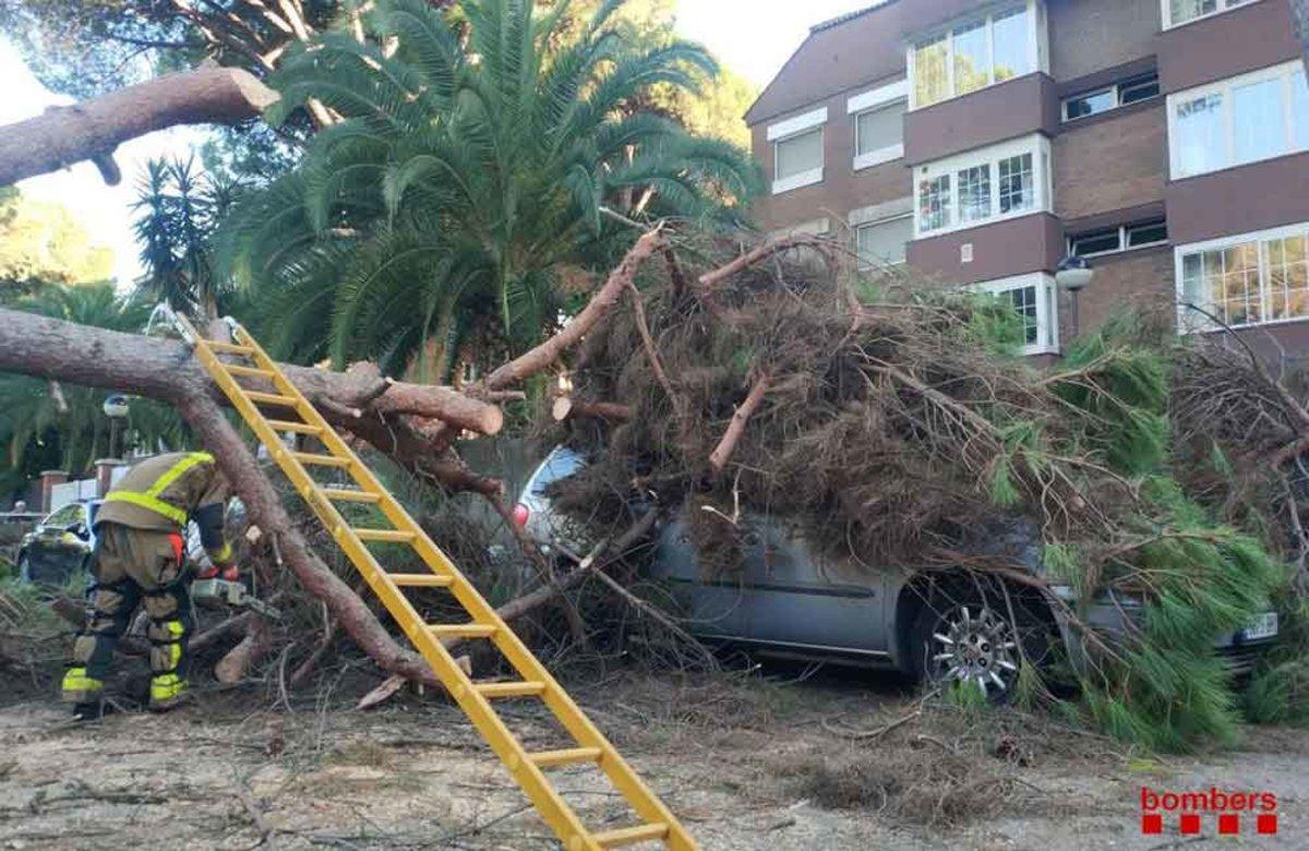Els Bombers retiren dos arbres caiguts a causa de forts vents a Gavà