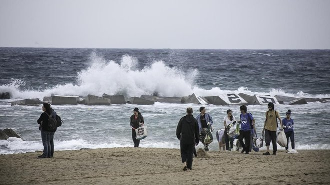 Estabilització de les platges