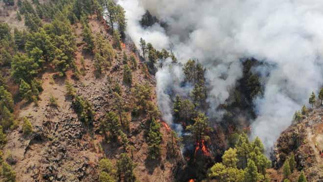 El incendio que desde el viernes afecta a La Palma ha quemado unas 400 hectáreas y aunque evoluciona favorablemente no se puede dar por controlado, pues los efectivos que luchan contra las llamas atacan ahora el flanco derecho, el más complicado, y esperan que hoy sea un día duro.