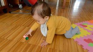 Un niño de 11 meses gatea por su casa.