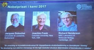 Tres investigadors de biomolècules guanyen el Nobel de química