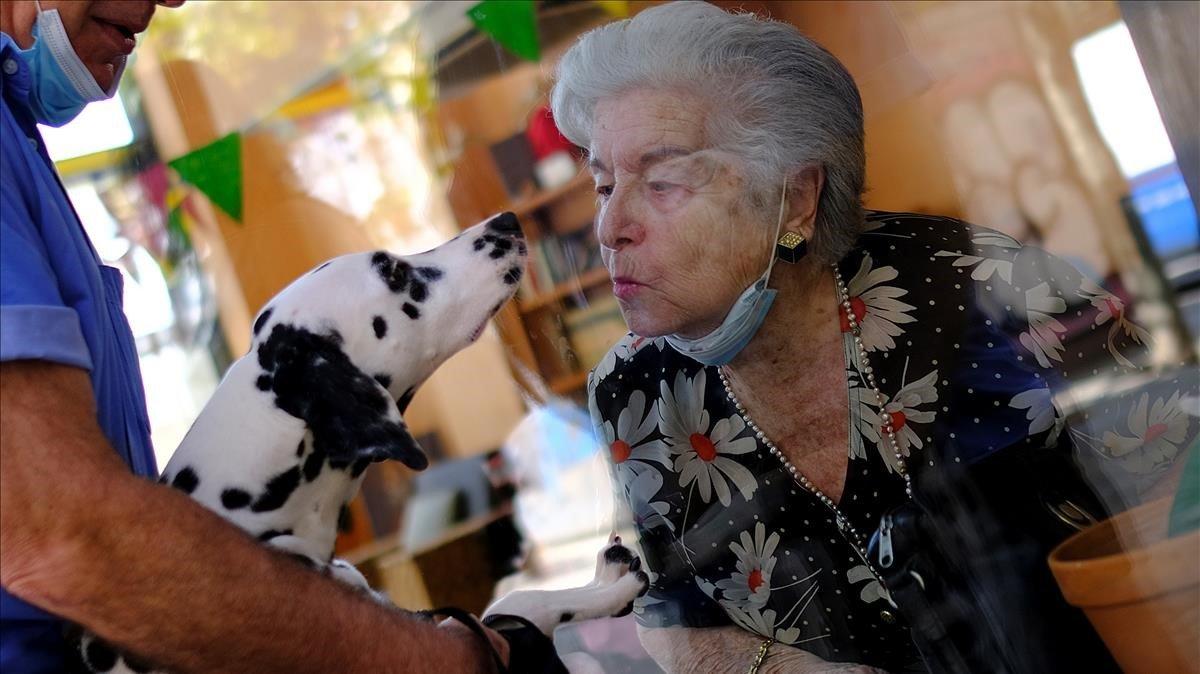 Maria de Concepcion Illa de 89 años, que vive en una residencia de ancianos, le lanza un beso a Menta, el perro de su vecino Antoni, a través de un vidrio en la residencia de ancianos Center Parc.