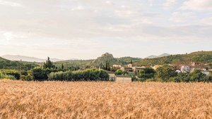 El tranquilo pueblo de Vilajuïga, en el Alt Empordà.