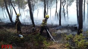 Incendi forestal al costat d'una urbanització de Cabra del Camp