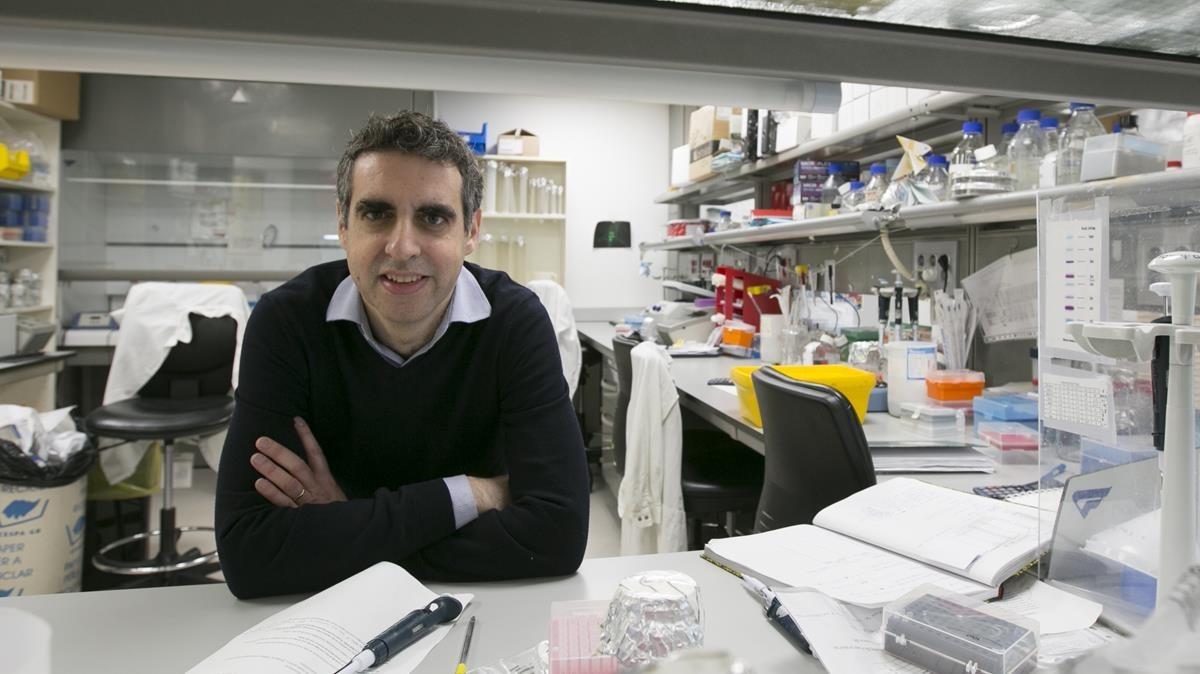 Un patró en el càncer de pulmó prediu l'eficàcia de la immunoteràpia