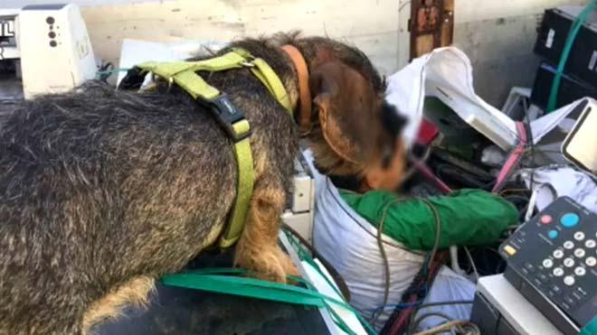 Rescatados en Melilla tres menores dentro de sacos de chatarra electrónica.
