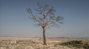 La Pau y el cambio climático