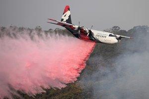 Estos fuegos, que según los expertos son más intensos debido al calentamiento global.
