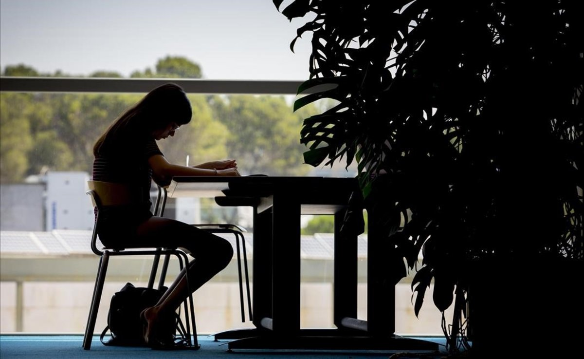 Un estudiante, en una biblioteca universitaria.